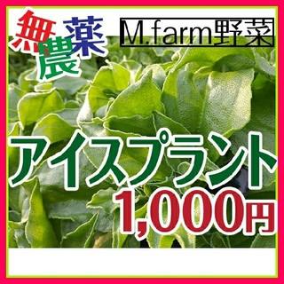 ❇️新鮮な野菜❇️無農薬❇️話題のアイスプラント