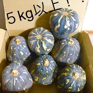 訳あり 肌焼け 有機 無農薬栽培 約 5kg以上 沖縄カボチャ 送料無料