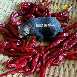 26本赤唐辛子(野菜)
