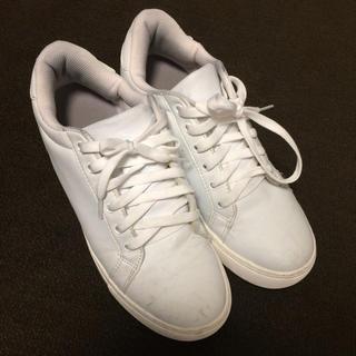 白いシークレットスニーカー(7cmアップ)(スニーカー)