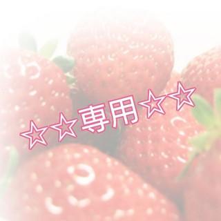EX馬鹿様専用♡ミニチュア・オブジェ♡(その他)