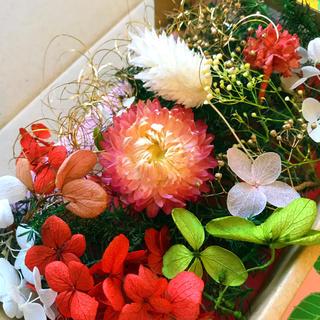ハーバリウム★花材いろいろ おすそ分けセット★クリスマス用にも 赤mix❸(プリザーブドフラワー)