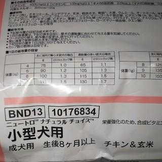 ニュートロナチュラルチョイスチキン&玄米小型成犬用19キロ(ペットフード)