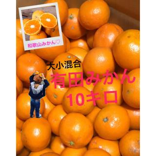 たっきー 様専用 和歌山 有田みかん大小混合10キロ おトク!(フルーツ)