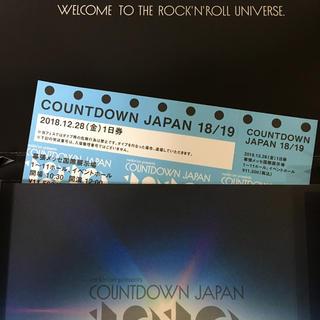 カウントダウンジャパン 28日 1日券(音楽フェス)