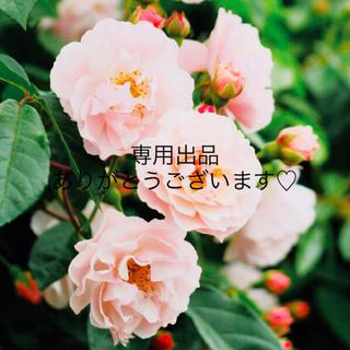 comgi様専用(コフレ/メイクアップセット)