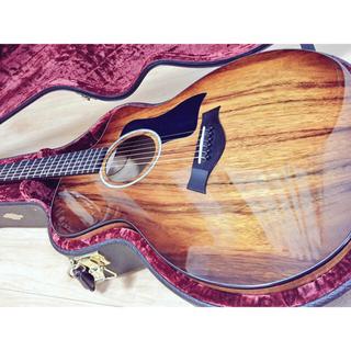Taylor 224ce-Koa-DLX(アコースティックギター)