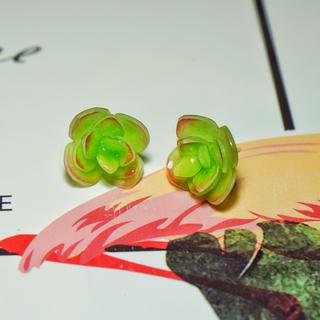 NO.14 プラバンピアス 多肉植物 森ガール 可愛い みどり イアリング