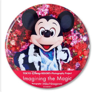 ディズニー(Disney)のイマジニングザマジック 缶バッジ(キャラクターグッズ)