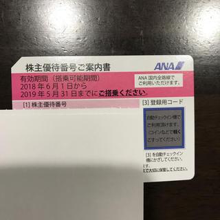 ANA株主優待券 1枚  2019年5月31日まで(その他)
