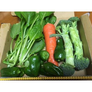 野菜詰め合わせ 自家栽培 コンパクト