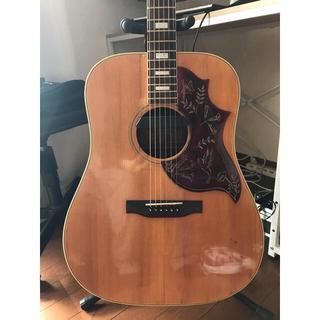 ギブソン(Gibson)のGibson hummingbird ヴィンテージ(アコースティックギター)