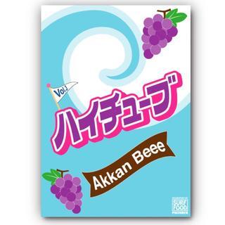 ほにほに様専用 HiTube VOL.3 AkkanBeee(ハイチューブ3 (サーフィン)