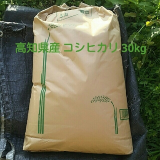 新米 コシヒカリ 玄米 30kg