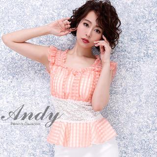 アンディ(Andy)の新品【Andy】アンディドレスSサイズ028(ナイトドレス)
