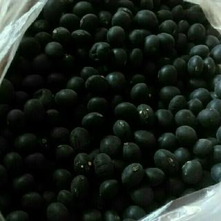 北海道産 黒豆 低農薬(乾物)