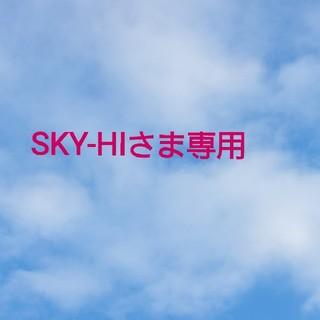 SKY-HIさま専用(ミュージシャン)