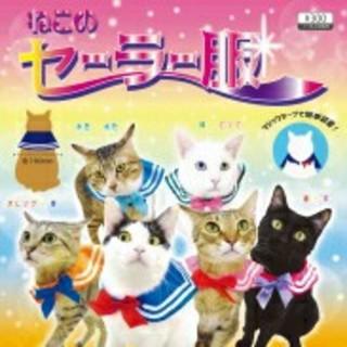 ねこのセーラー服*セーラームーン&セーラーちびムーン(猫)