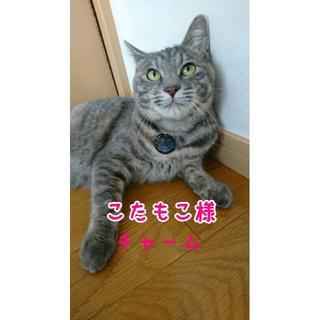 Miwa♥neo様専用猫チャーム(チャーム)