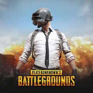 Steam pubg battlegrounds(PCゲームソフト)