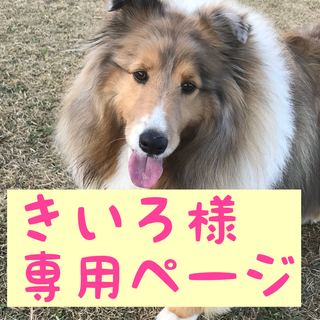 きいろ様専用ページ(ペットフード)