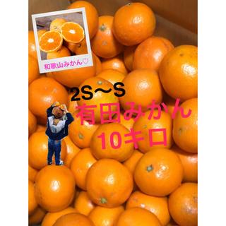 和歌山 有田みかん2S〜S10キロ 小さめ 完熟!(フルーツ)