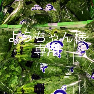 専用(野菜)