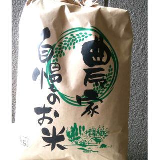 新米 滋賀県産★コシヒカリ 5キロ(米/穀物)