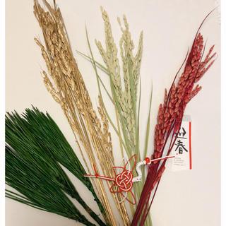稲穂、みやこ松 お正月花材セット(プリザーブドフラワー)