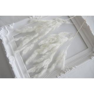 エリアンサス 白 わけあり プリザーブドフラワー 花材(プリザーブドフラワー)