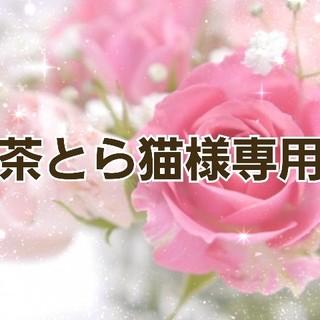 ★★茶とら猫様専用★★(つけ爪/ネイルチップ)