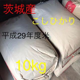 お米 コシヒカリ 茨城産 10キロ 古米 農家直送 着払い発送 精米(米/穀物)