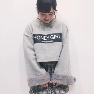 ハニーシナモン(Honey Cinnamon)のトップス ハニーシナモン(カットソー(長袖/七分))