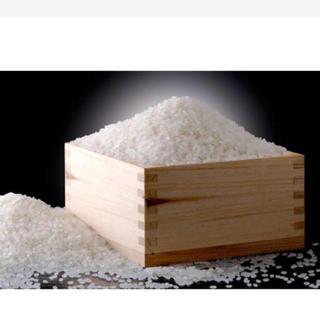 lumamai様専用☆新米30kg 送料込「無洗米」(米/穀物)