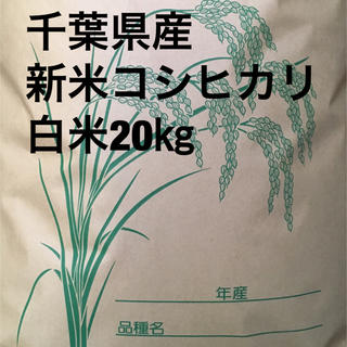 コシヒカリ白米20キロ(米/穀物)