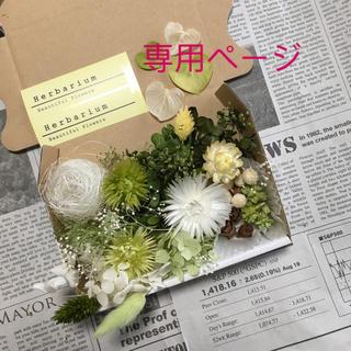 xing.banben様♡専用ページ(プリザーブドフラワー)
