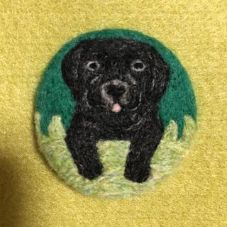 羊毛フェルトブローチ 草原からひょっこり 黒ラブラドール(コサージュ/ブローチ)
