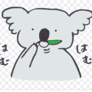 ネージュ様専用(ベビーフェンス/ゲート)