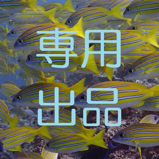 【花ちゃん6才様専用】金インゴット100g(貨幣)