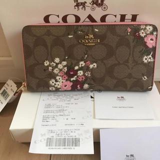 COACH - coach長財布29931 正規品 新品 即日発送