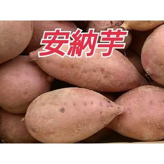 種子島産安納芋(安納紅)3キロSサイズ