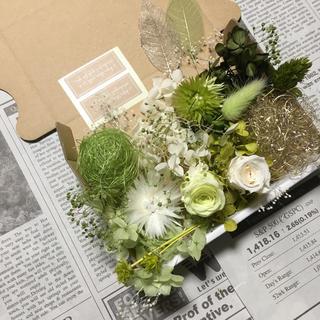 フレッシュグリーン&アンティックホワイト*花材詰め合わせ(プリザーブドフラワー)