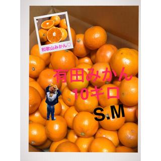 和歌山 有田みかんS M混合10キロ(フルーツ)