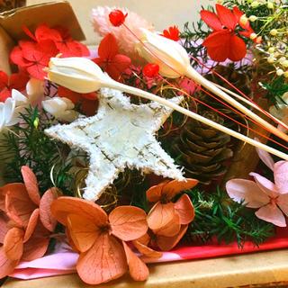 ハーバリウム★花材いろいろ おすそ分けセット★クリスマス用にも ★❸(プリザーブドフラワー)