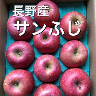 長野産 サンふじ ご家庭用りんご