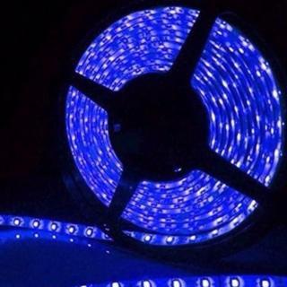 12V高輝度LEDテープライト SMD 2835 3528 5M 青色(蛍光灯/電球)