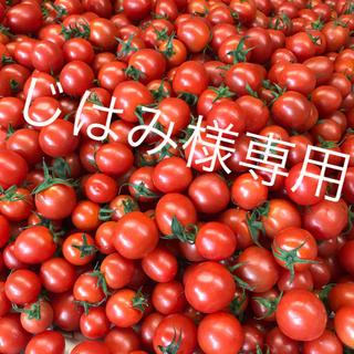 じはみ様専用 ミニトマト1kg(野菜)