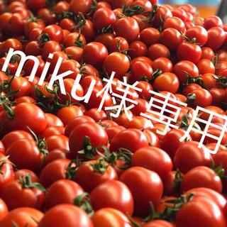 miku様専用 ミニトマト2kg(野菜)
