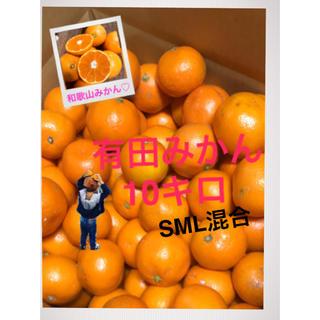 和歌山 有田みかんS M L 大きめ混合10キロ(フルーツ)