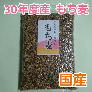 もち麦 ☆生産者直売☆ 800g
